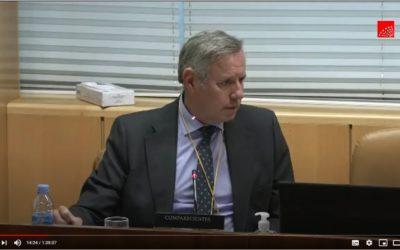 Comisión de Investigación sobre COVID en residencias, comparecencia de Ignacio Fernández-Cid (FED)